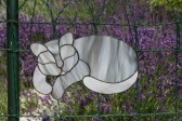 Kočka Máša - Lesní sklo