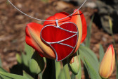Srdce velké červené - Lesní sklo