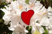 Srdíčko z lásky - Lesní sklo