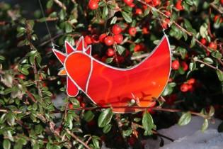 Červený kohout - Lesní sklo