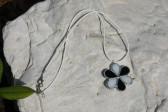Kytička černo-bílá - Lesní sklo