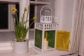 Lucerna žlutozelená - Lesní sklo