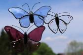 Modrásek na zavěšení - Lesní sklo