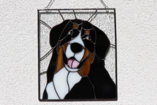 Bernský salašnický pes - Lesní sklo